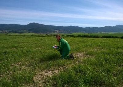 Azienda Agricola Podere Mandriato