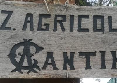 Azienda Agricola Cantini