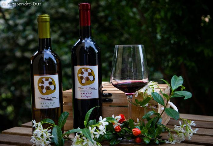 Terre-di-Creta-vino