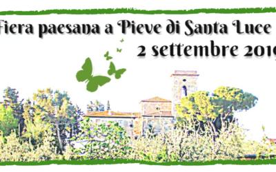 Festa Paesana Pieve Santa Luce