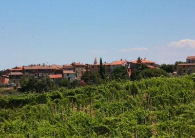 Borgo di Collemontanino